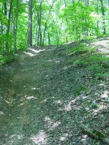 Rekluse Hill Test (2)