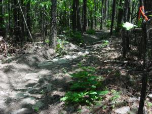 Rekluse Tight Trail Test (2)