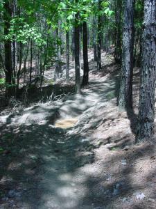 Rekluse Tight Trail Test (3)